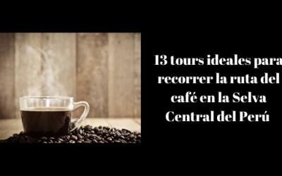 13 tours ideales para recorrer la ruta del café en la Selva Central del Perú
