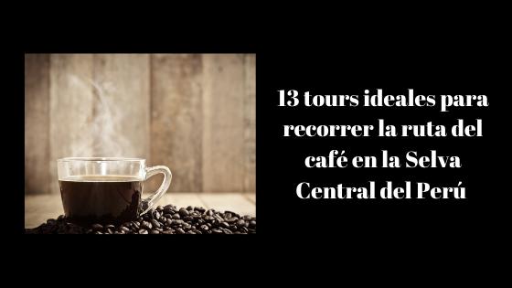 13 tours ideales para conocer la ruta del café en la Selva Central del Perú