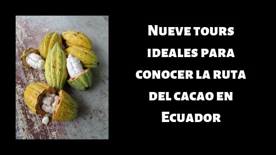 ruta del cacao en Ecuador