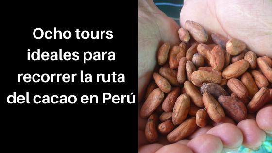 ocho tours para recorrer la ruta del cacao en Perú