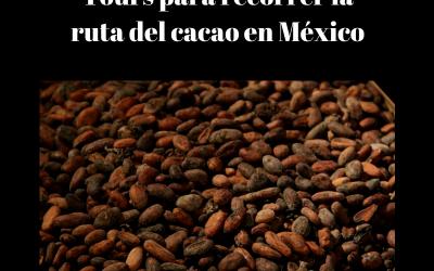 Tours para recorrer la ruta del cacao en México