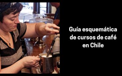 Guía esquemática de cursos de café en Chile