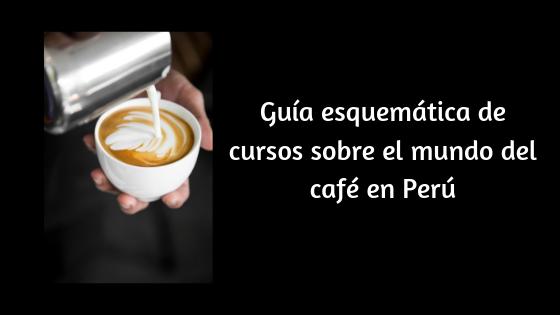 cursos sobre el mundo del café en Perú