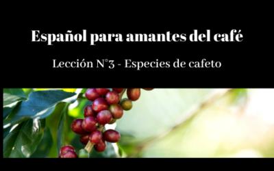 Español para amantes del café – Lección N° 3 – Especies de cafeto